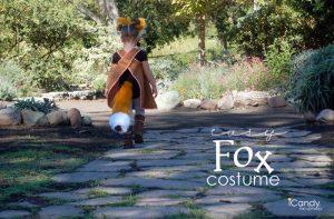 Halloween 2015: the Fox